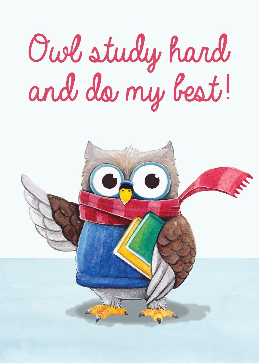 owl study card