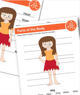 Parts of the Body Printable