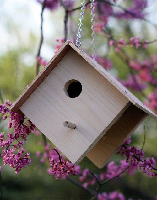 basic bird house